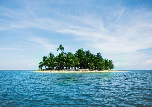 palmy na ostrově